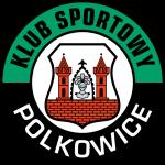 Gornik Polkowice logo