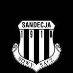 Sandecja Nowy Sacz logo
